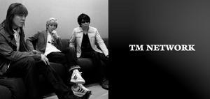tmn_top4.jpg